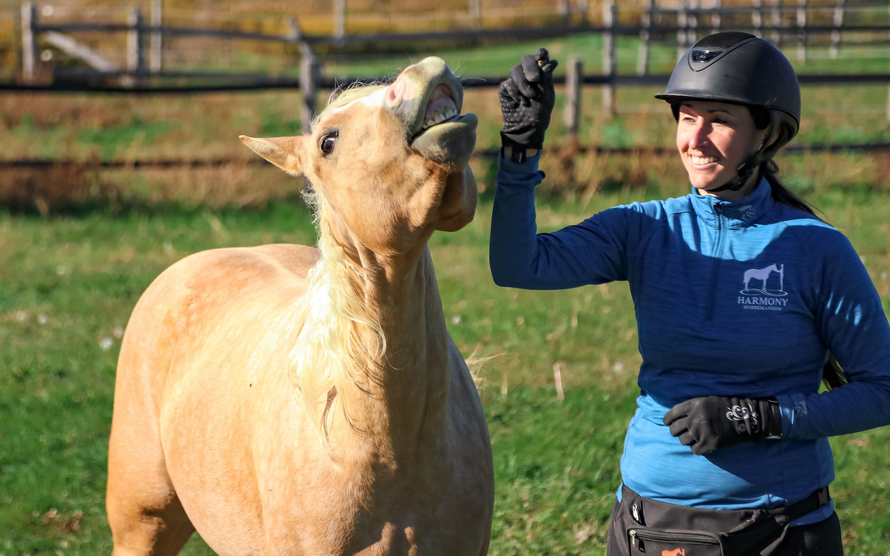The Best Gifts for Equestrians and Horse Crazy Friends